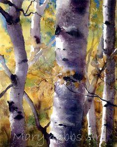 Sunlit Birches ~ Mary Gibbs Art