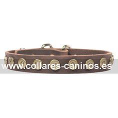 Económico collar cuero y tachuelas para actividades perros Cane Corso diseño estrecho - S28