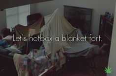Let's hotbox a blanket fort!--------OMG, this is SO SO funny!!!! :0)