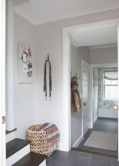 The best gray paint colours including this entryway and hallway in Benjamin Moore Balboa Mist. I love the high contrast stairs as well