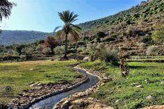 Valley in Palestine
