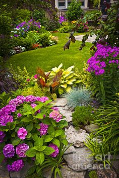 Flower garden fine art photography print - Copyright © Elena Elisseeva