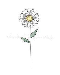 Get a print or sticker of your birth flower from ekwbirthflowers on Etsy! #birthflower #birthflowers #flowertattoodesigns #floralart #flowertattooideas #daisy #botanicalart #linedrawings #botanicaltattoo #april Baby Stickers, Laptop Stickers, Cute Stickers, April Birth Flower, Birth Month Flowers, Botanical Tattoo, Botanical Art, Birth Flower Tattoos, March Baby