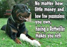 #Rottweiler. It's true!