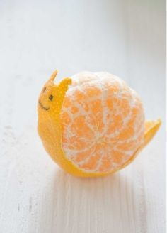 Orange peel snail