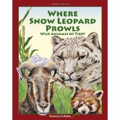 #Book Review of #WhereSnowLeopardProwls from #ReadersFavorite - https://readersfavorite.com/book-review/38556  Reviewed by Mamta Madhavan for Readers' Favorite  Where Snow Leopard Prowls: Wild Animals of Tibet by Naomi C. Rose is a very informative and educational book that throws light on the Tibetan plateau and the wild animals that live there. The plateau provides diverse habitats that range from deserts, rocky cliffs, snow peaks, grasslands, forests, lakes, rivers and marshes. This is…