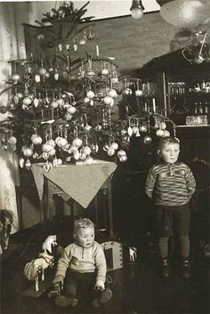circa-1910 ...well...perhaps they were told....surprise!!!!....great tree...
