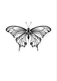 Black Tattoos, Blackwork, Moth, Insects, Animals, Tattoo, Animales, Animaux, Animal
