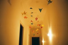 hanging cranes