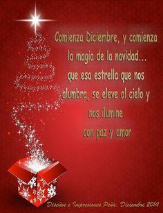 Bienvenida a Diciembre