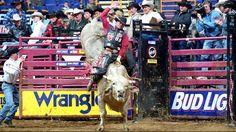 199 Best Pbr Images Bull Riders Bull Riding