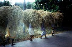 Haystacks, Goa