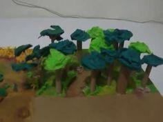 Ecosistema Terrestre Bosque Maqueta