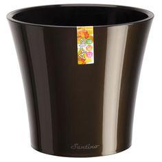 """Santino Arte Round Pot Planter Color: Transparent/Transparent, Size: 7.9"""" H x 8.6"""" W x 8.6"""" D"""