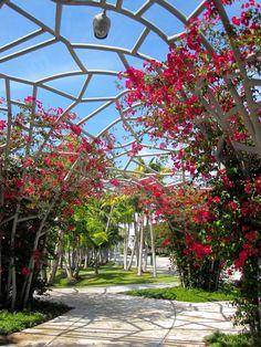 West8 - Miami Beach SoundScape