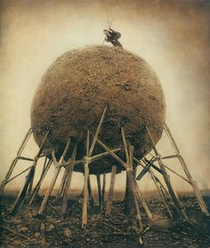 surreal photography by robert and shana parkeharrison 2