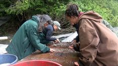 An extraordinary history lesson is revealing itself on one of the Broken Group Islands off Ucluelet this week. Remains of a 4-thousand-year-old First Nations village are being unearthed in an archaeological dig. As a team scrapes away layers of time and sifts through pounds of past, Keith Island is revealing its long-buried story as a …