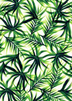 palm tree background tumblr pattern