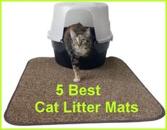 Need a litter mat that actually works at controlling the mess? Here's 5 that are proven winners ... see more at PetsLady.com ... The FUN site for Animal Lovers