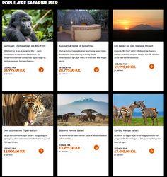 De mest købte safarirejser til Afrika med Safari Eksperten #safari #africa #afrika #afrikasafari
