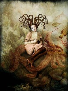 The Wishing Seat by Catrin Welz-Stein.