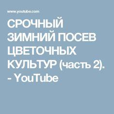 СРОЧНЫЙ ЗИМНИЙ ПОСЕВ ЦВЕТОЧНЫХ КУЛЬТУР (часть 2). - YouTube