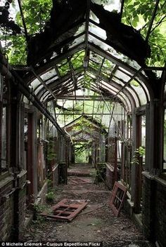 Haunting images of abandoned agriculture institute overtaken by plants