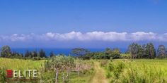 Located in Kaiwiki Homesteads, one of the most sought after locations on the Hamakua coast. The adjoining 10.95 acre lot (TMK 3-2-9-4-113 and MLS 293849) is also being offered for sale. These parcels offer ocean views, fenced pasture, stream accessibility, deep soil, privacy and are priced to sell! Only 15 minutes from Hilo and accessed via a paved road, these properties are located in an established farming and ranching community with close proximity to the historic Wailea town and Honom...