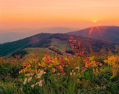 Bieszczady mountains, Poland. Must visit them in the autumn, some day...