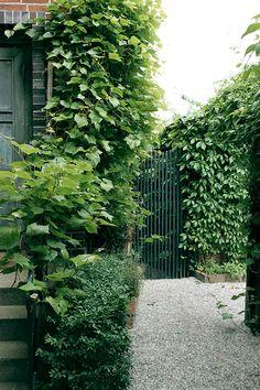How to Make Your Outdoor Garden Planters Healthy and Beautiful? Vertical Garden Design, Garden Planters, Shade Garden, Dream Garden, Amazing Gardens, Garden Inspiration, Vegetable Garden, Garden Landscaping, Outdoor Gardens