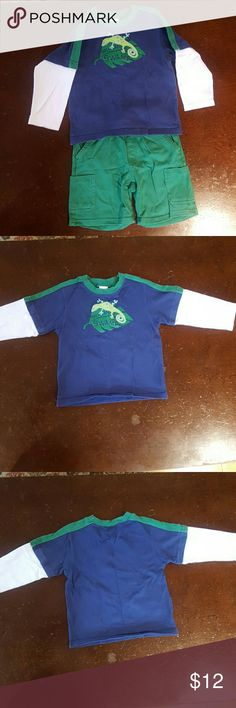 Gymboree short with long sleeved t-shirt, 3T Gymboree green knit shorts with matching navy, white and green long sleeved t-shirt with salamander.  100% cotton.  No visible stains or damage.  Comes from a non-smoking home. Gymboree Matching Sets