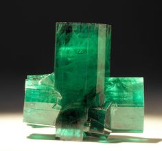 Beryl variety Emerald, photo by Stan Celestian / Mineral Friends Minerals And Gemstones, Rocks And Minerals, Green Gemstones, Natural Crystals, Stones And Crystals, Beautiful Rocks, Mineral Stone, Emerald Gemstone, Rocks And Gems