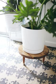Make this little wooden plant stand to add height to your larger houseplants (only I'd add wheeled casters)