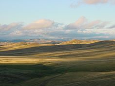 Mongolian steppe by Linh Vien Thai