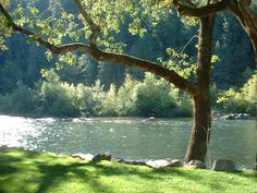 Rogue River ~ Medford, Oregon. (I live in the small town of Rogue River, Oregon)