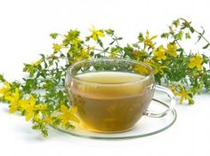 St. John's wort tea is a great remedy against women's diseases. It is especially recommended for uterine cramps, inflammation of the uterus and menstrual difficulties.