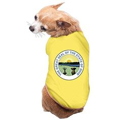 Great Seal Of The State Of Ohio PET SHIRT Dog T SHIRT Medium Yellow - Brought to you by Avarsha.com