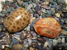These are some examples of Michigan stones from which we make our jewelry: Leland Blue, Petoskey, and Lake Superior Agate