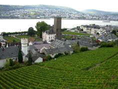 my home town - Rüdesheim in Hessen, Germany Rhine River Cruise, German Girls, Learn German, Germany Travel, Vacation Ideas, Places Ive Been, Holland, Dolores Park, Beautiful Places