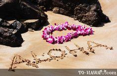 Uma visão geral da cultura do Havaí