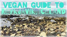 A guide to my favorite vegan and vegetarian-friendly restaurants in and around Reykjavik, Iceland.