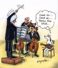 Music funny, with dogs involved.