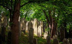 Alter jüdischer Friedhof | Fotograf Hannover