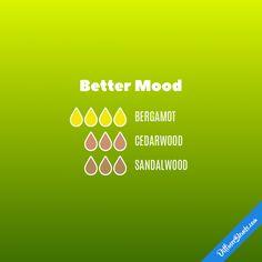 Better Mood - Essential Oil Diffuser Blend