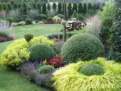 Enjoy collection garden styles and let me know, find out your thinking about these garden design ideas. Amazing Gardens, Beautiful Gardens, Garden Design Pictures, Backyard Plan, Backyard Ideas, Evergreen Garden, Garden Journal, Beautiful Flowers Garden, Front Yard Landscaping