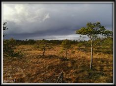Torronsuo, Tammela, Suomi Finland