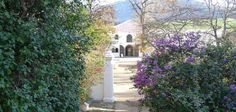 Franschhoek is a spectacular wine growing region, surrounded by towering mountains and boasting some of the most dramatic views and most amazing wine farms Wine Cellar, Wine Tasting, Wine Recipes, South Africa, Tours, Explore, Amazing, Plants, Travel