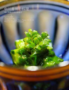 Takenoko Kinomeae Japanese food「和食」