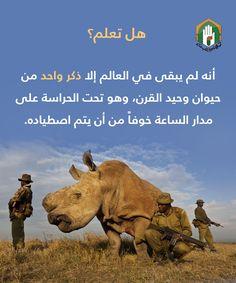 وحيد القرن أضحى وحيداً