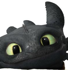 Toothless is THE cutest dragon EVER in the known universe! Toothless And Stitch, Toothless Dragon, Hiccup And Toothless, Hiccup And Astrid, Cute Toothless, Dreamworks Dragons, Dreamworks Animation, Animation Film, How To Train Dragon